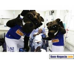 Raposão o mascote do Cruzeiro na sua Festa BH e Regiao