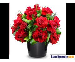 Floricultura em Interlagos SP