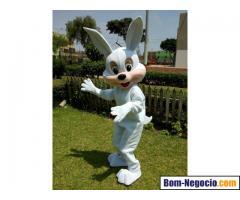 Contratar coelho da pascoa personagem vivo bh. Coelho da pascoa para  entrega de ovos