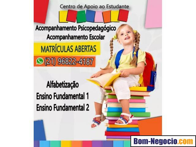 Acompanhamento Psicopedagógico e Escolar