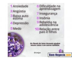 Terapia Jacarepaguá