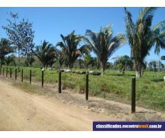 Vende-se 500 hectares em Candeias do Jamari RO