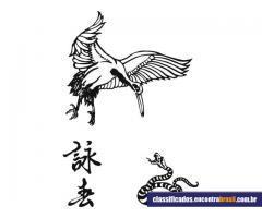 Wing Chun Taubaté